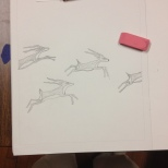 Drawing antelopes